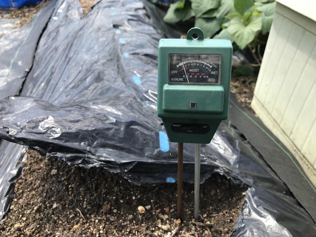 土壌の酸度測定
